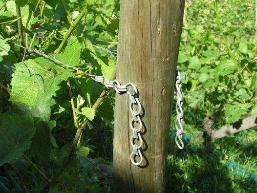 Vineyard IND wire tensioner chain2