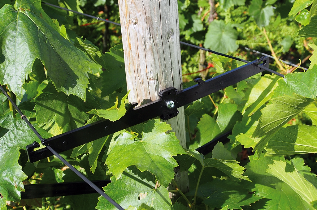 vineyard wire holder double fixed Ausleger