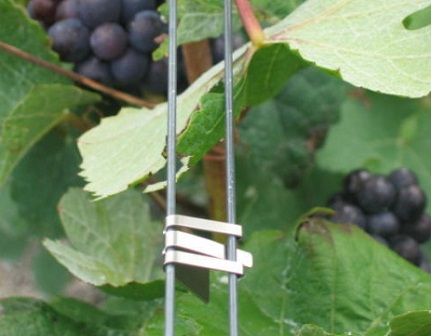 Vineyard SCDC Foliage wire clips Steel CLIPI3